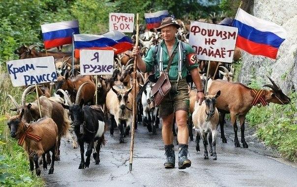Несмотря на санкции, доходы ближнего круга Путина продолжают расти, - российский журналист - Цензор.НЕТ 6815