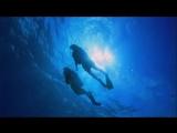 Scuba Diving - 699