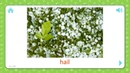 Hail Weather And Seasons Flashcards for Kids