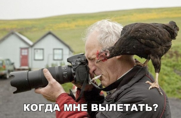 фотожаба