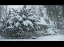 Winter Cabin in a Snowstorm | Falling Snow Heavy Winds Blowing
