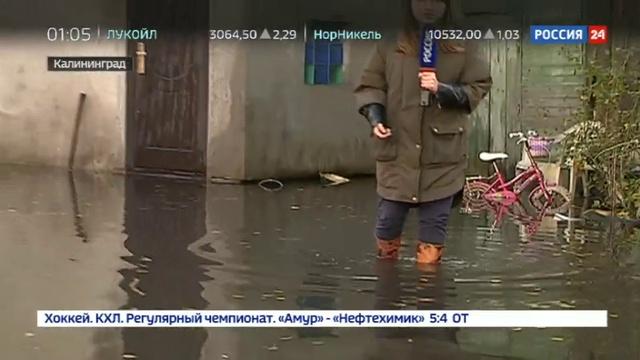 Новости на Россия 24 • Улицы Калининграда скрылись под водой из-за аномальных ливней