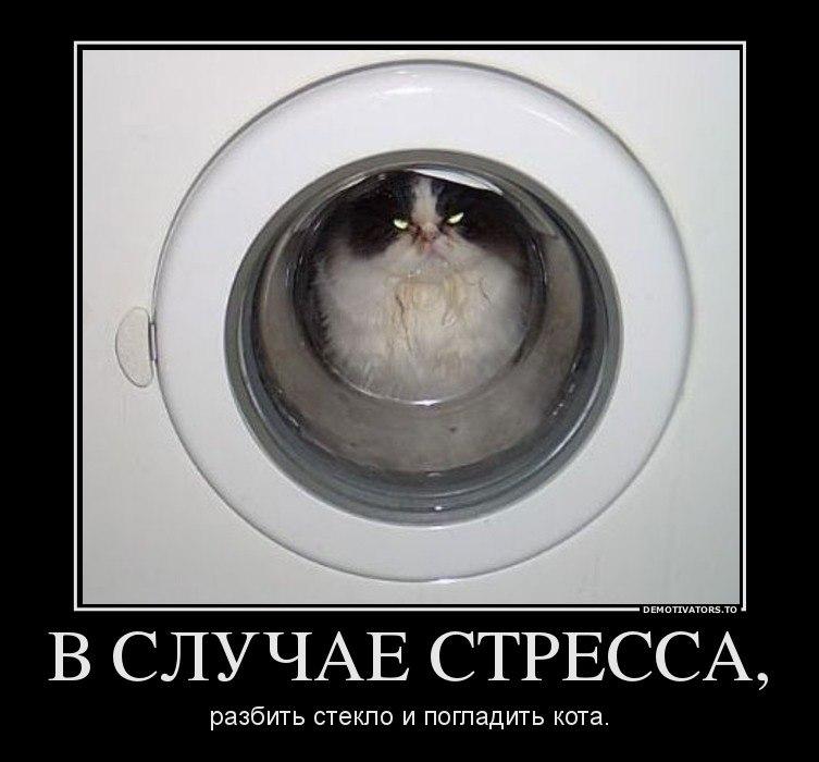 Порно фото русских женщин дома Суфий