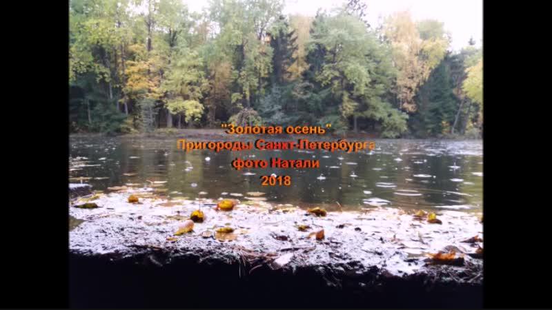 Золотая осень Лак дождя