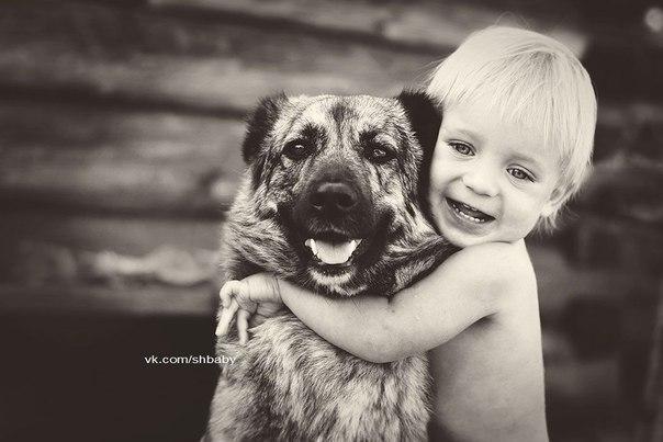 Дитина і собака статиси про стправжніх друзів