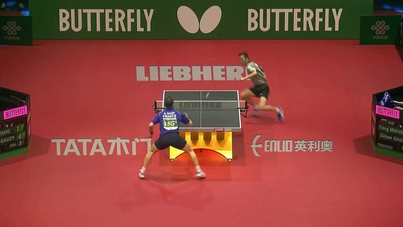 Simo Gauzy vs Wang Yang R16
