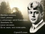 Елена Киселёва депутат ЗС СПб о Сергее Есенине