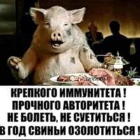 Анкета Александра Прушина