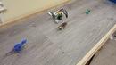 Детский центр робототехники Умник - Майло нашел динозавров