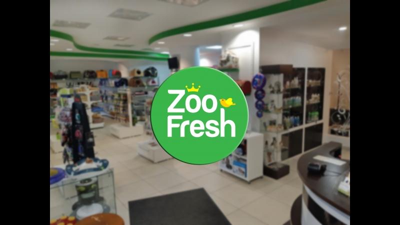 Магазин ZooFresh. Будем знакомы!