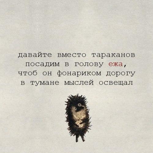 http://cs543106.vk.me/v543106418/11b3d/ME5bBrJpCk8.jpg