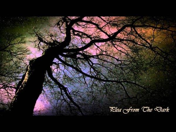 Solitudes Call - Plea From The Dark (Full Album)