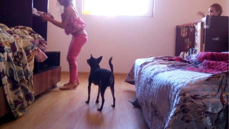 Аэлита играет с Винни