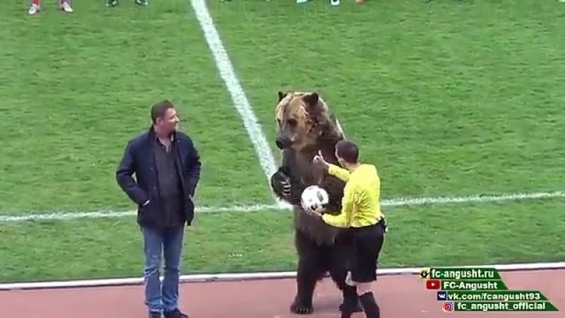 Начало матча Машук КМВ Ангушт ПФЛ это настоящий цирк 😂