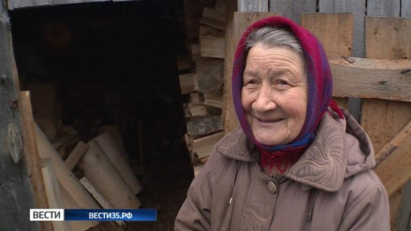 Пользователи интернета помогли пенсионерке дровами и деньгами