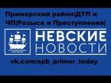 Невские новости. Отдел происшествий. (15.06.2018) - ЧП в Приморском районе.