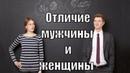Отличие мужчины и женщины при общении друг с другом Сатья дас Киев 13 05 2018