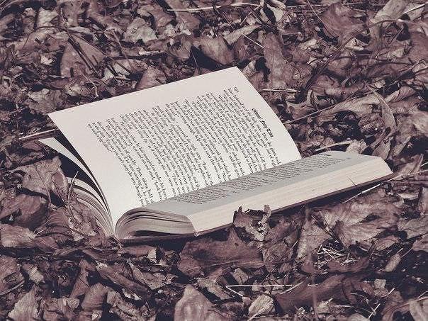 Лучшие книги великих психологов  1. Альфред Адлер. Понять природу че