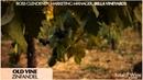 Bella Vineyards - Old Vine Zinfandel