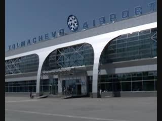 Назван список выдающихся личностей, в честь которых могут назвать аэропорт Толмачёво