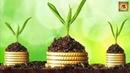 Садово - дачные СЕКРЕТЫ идеи и ПОЛЕЗНЫЕ СОВЕТЫ для дачи и Маленькие хитрости огородников