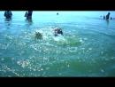 Стася поплыла!