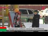 В Сургуте стая бродячих собак напала на пятилетнего мальчика