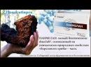 'Панмелан' биокомплекс на основе чаги от Сибирского Центра Фармакологии и Биоте