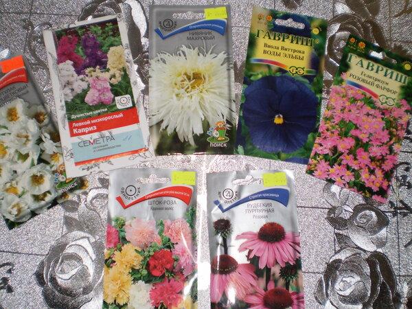 7 очаровательных цветов, которые я посажу в марте.