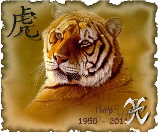 Анимация картинки льва и тигра, анимационные