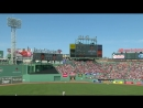 MLB 2016 04 21 Tampa Bay Rays VS Boston Red Sox (2)