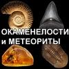 Окаменелости и метеориты www.paleotema.com