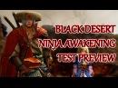 Black Desert Online Ninja Awakening Steparu the Test Dummy