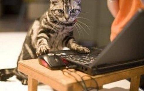 Подработка на дому через интернет