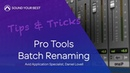Tips Tricks Batch Renaming Tracks Clips in Pro Tools 12.8.2