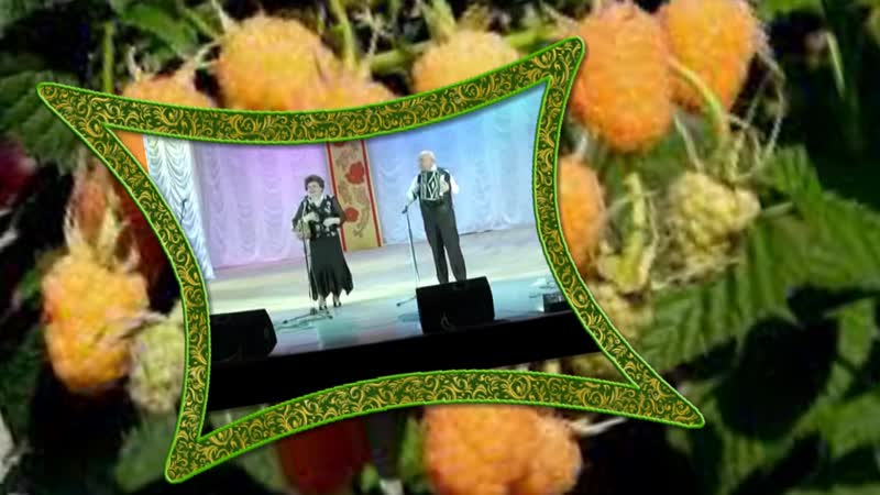 Малина-сл и муз .В .Белкин.исп -Евгения Белкина,аккомп.Валерий Белкин