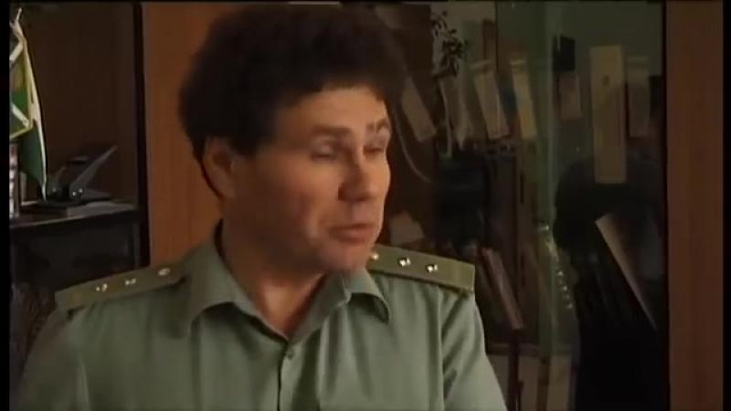 КАК РУССКИЙ ЛЕС УХОДИТ В КИТАЙ