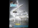БЕЛЫЙ РОЯЛЬ Уроки фортепиано гитары вокала по скайпу Skype