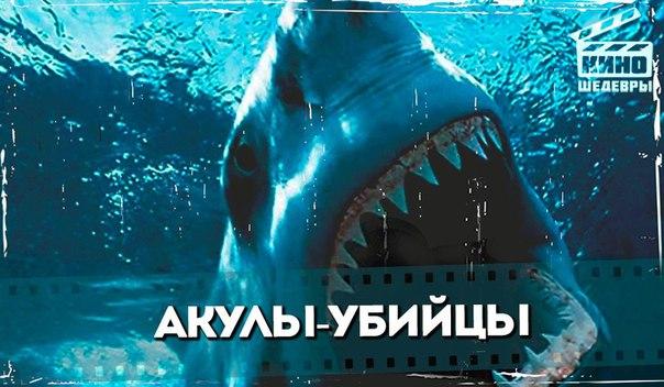 Подборка отличных фильмов про акул-убийц.