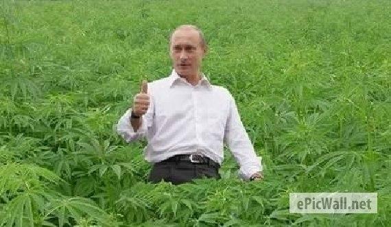 США обеспокоены эскалацией насилия на Донбассе: РФ стоит перед четким выбором между сохранением санкций и выполнением своих обязательств, - Керри - Цензор.НЕТ 2552