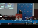 Flammende Rede von Leyla Bilge AfD Diese Toleranz gegenüber des Islams ist eine tötliche Toleranz