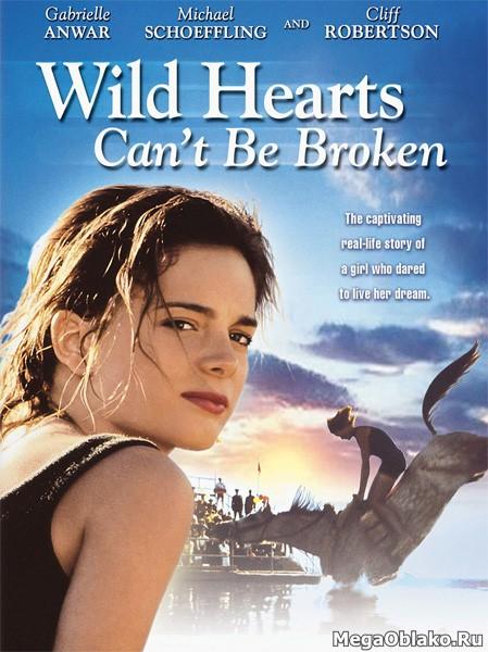 Отважные сердца не разбиваются / Храбрых сердцем не сломить / Wild Hearts Can't Be Broken (1991/WEB-DL/WEB-DLRip)