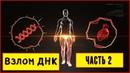 Взлом ДНК ГЕННЫЕ КЛЮЧИ - ДИЗАЙН ЧЕЛОВЕКА медитация концентрация СОЗЕРЦАНИЕ часть 2