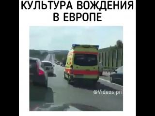 videos_prikol___Bm21eQ8n8QJ___.mp4