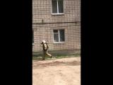 Пожар в Йошкар-Оле_ из квартиры на первом этаже валит дым