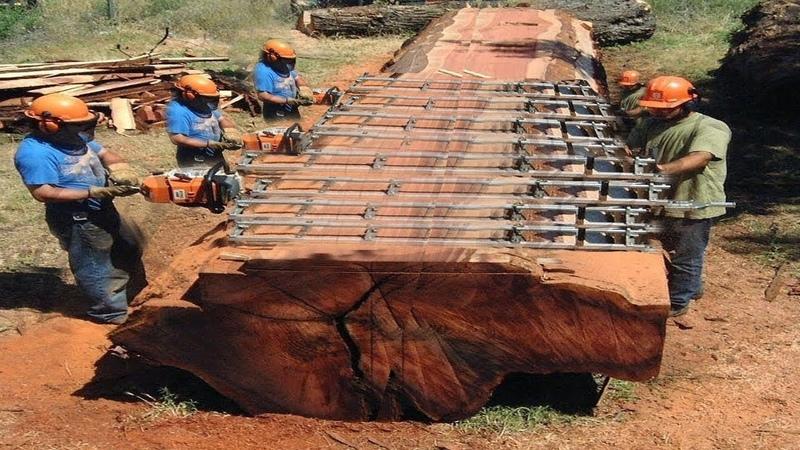 Intelligent Technology Mega Machines Unusual Woodwork Turbo ChainSaw Log Splitter CNC Sawmill Saw