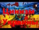 Цинизм Украины