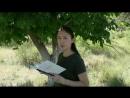 Жастар таңдайды - Молодежь предпочитает атты жобасына қатысушы Базарбай Айпара жастарды кітап оқуға шақырады