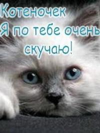 Викуся Сировецкая, 11 декабря 1993, Махачкала, id225652840