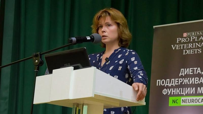 Конференция 2018.09.19 Докладчик Бокарева Людмила Валерьевна